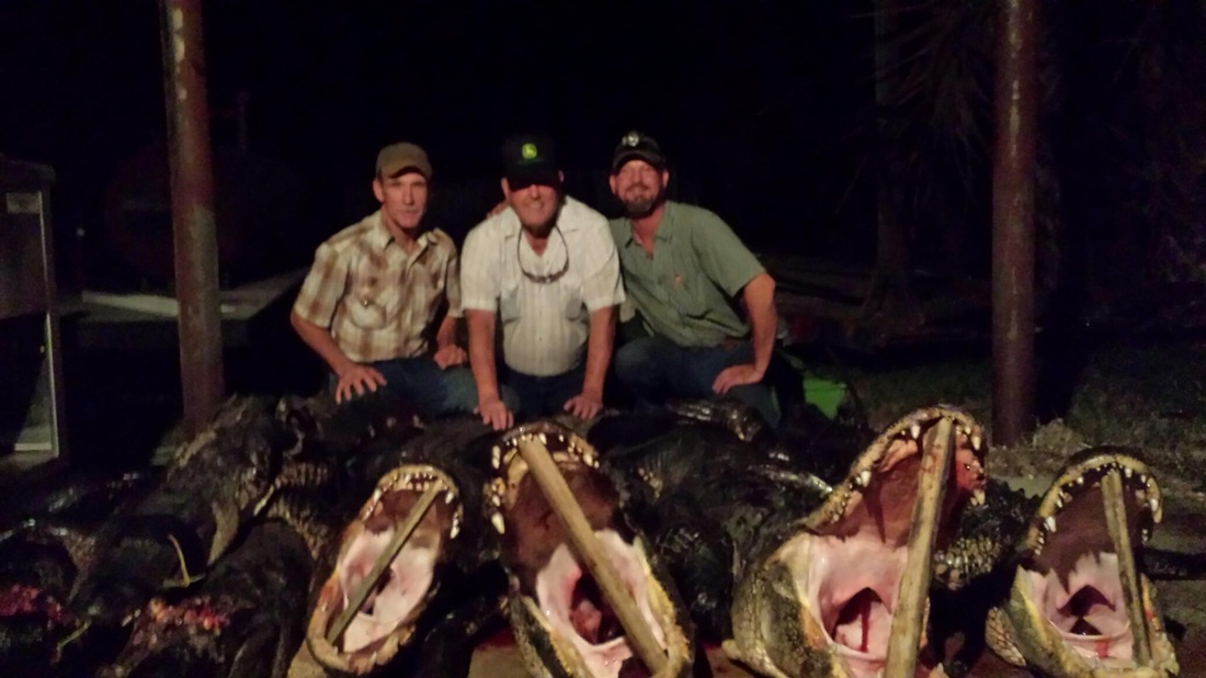 Let Casey Ward & Big 'O' Help You Hunt a Monster Gator in Florida!