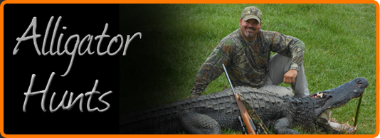Guided Alligator Hunting - Florida's Big 'O' Hunts